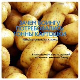 Зачем Боингу потребовались тонны картошки?