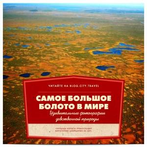 Самое большое болото в мире: удивительные фото и факты