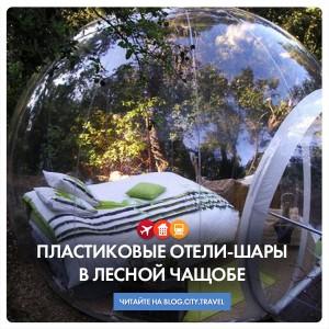 Пластиковые шары-отели в лесной чащобе