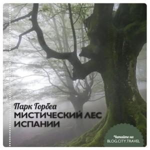 Парк Горбеа: мистический лес Испании