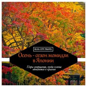 Осень - сезон момидзи в Японии