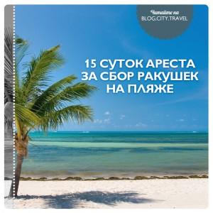15 суток ареста за сбор ракушек на пляже