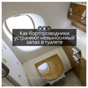 Как бортпроводники устраняют невыносимый запах в туалете