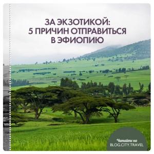 За экзотикой: 5 причин отправиться в Эфиопию