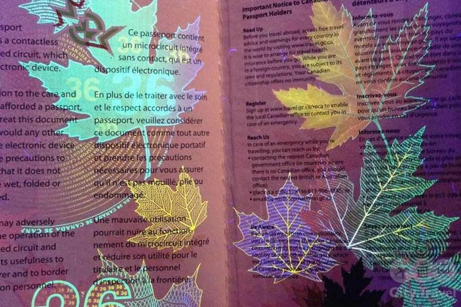 Паспорта мира02