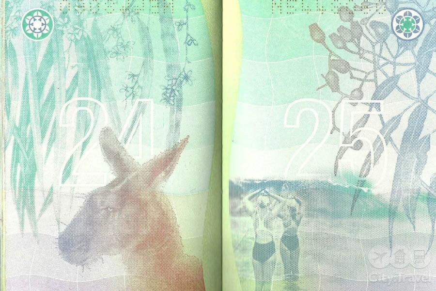 Паспорта мира08